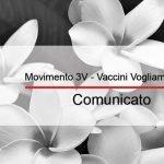 Comunicazione del Movimento 3V al Consiglio dei Ministri della Repubblica italiana